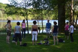 La Sylvothérapie : La forêt, un soutien pour notre santé